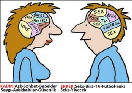 kadin-beyni-vs-erkek-beyni_267296